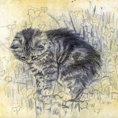 Cat on Stump drawn about age fifteen